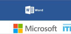 Microsoft Word Expert